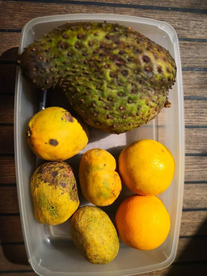 Mango, appelsin og atemøya.