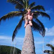 Sverre i palmen