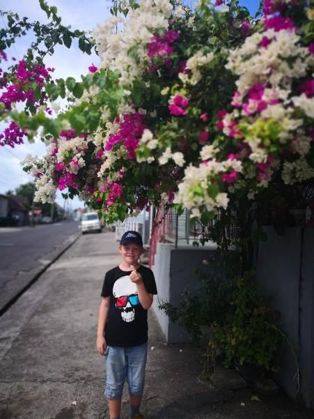 Sverre lukter på blomstene